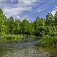 Исток реки :: юрий Амосов