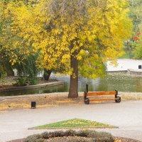 Осень в парке :: Serega Денисенко