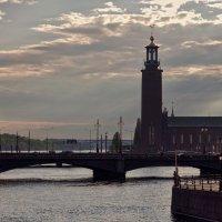 В лучах уходящего солнца :: Olga F