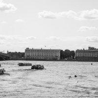 Теплоходы на Неве :: Valerii Ivanov