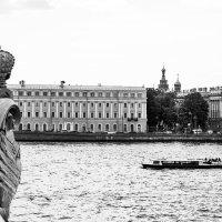 Водные экскурсии по Неве :: Valerii Ivanov