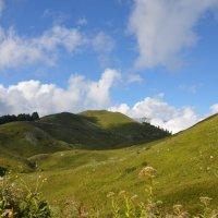 Гагры. В горах. Высота приблизительно 1770 метров. :: Svet_Lana ZGS