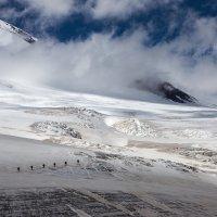 На ледовом поле Гарабаши :: Юрий Шевченко