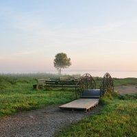 Маленький пляж утром :: Андрей Лошаков