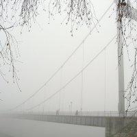 Туман :: mr Lithe