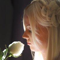 ...и роза :: Владимир Широков