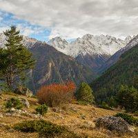 Вид на ущелье Адыл-Су :: Юрий Шевченко