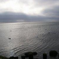 море :: Ирина Красникова-Дашкова