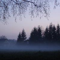 Туман 2 :: Вера Кудина
