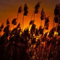 Огненный закат :: Юрий Клишин