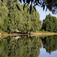 Река Полисть... :: Ирина Чикида
