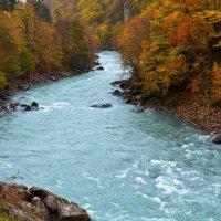 Осень :: Мамука Гоциридзе