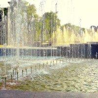 У большого фонтана. :: Игорь