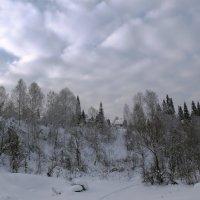 Деревья голы; ковер зимы покрыл холмы :: Нина северянка