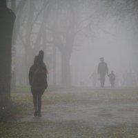 Осень... Туманное утро... :: Алина