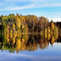 осень на берегу :: gribushko грибушко Николай