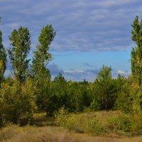 Осень наступает... :: Александр Лонский