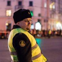 страж порядка :: Наталья Василькова