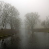 Осенний туман :: Николай Климович