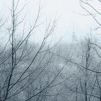Первый снег :: Сергей Ромадин