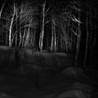 волчья губа :: Антон F