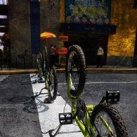 Bikes :: Алексей