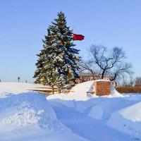 В снежную зиму :: Valerii Ivanov