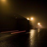 Туман :: Александр Кутненко