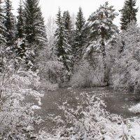 Первый снег :: Павел