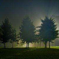 Ночной туман :: Игорь Герман