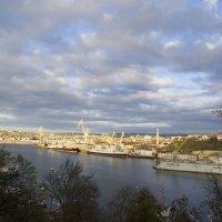 Ноябрь в Севастополе :: Алексей Петраш