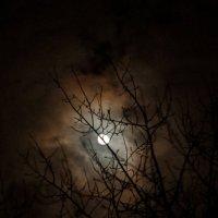 Луна :: Дмитрий Абросимов