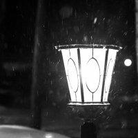 Снежные ночные мотыльки... :: Виталий Левшов