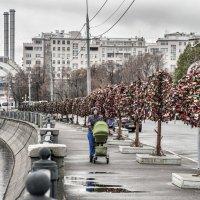Болотная площадь без митингов :: Борис Гольдберг