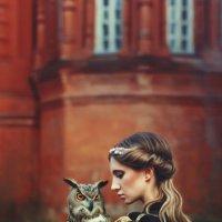 owl :: Alena Skazka
