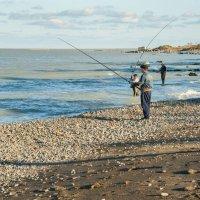 Рыбалка на Каспии :: Ирина Токарева