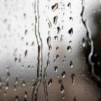 Дождь :: Anna Bortkevich