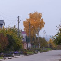 Харьков. Пригородный поселок :: Владимир Кроливец