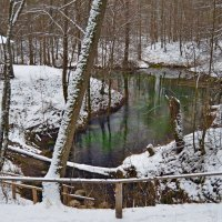 по первому снежку :: Николай Одегов