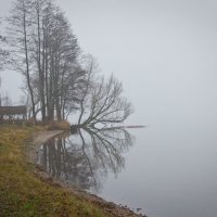 Ноябрь - осенняя хандра :: Виталий Латышонок
