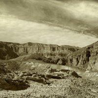 Timna national geological park of Israel. :: Lidiya Dmitrieva