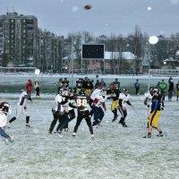 И снег не помеха :: Сергей Банков