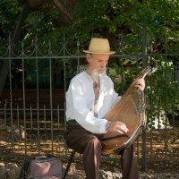 Старый музыкант... :: Павел Голубев