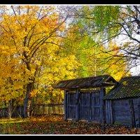 Заброшенный дом :: Валерий Шибаев