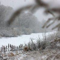 Первый снег :: Владимир Янцен