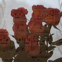 Ноты и розы :: Светлана