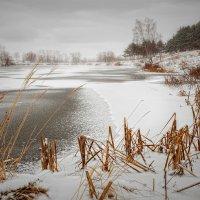 Зима пришла :: Валерий Шейкин