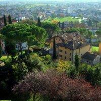 Gorizia, Italija :: Tomas