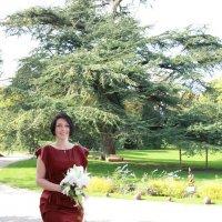 Mariage :: Olga Merlinge