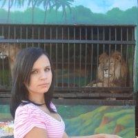 zoo :: Kesha Meder
